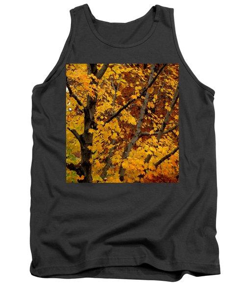Autumn Moods 21 Tank Top