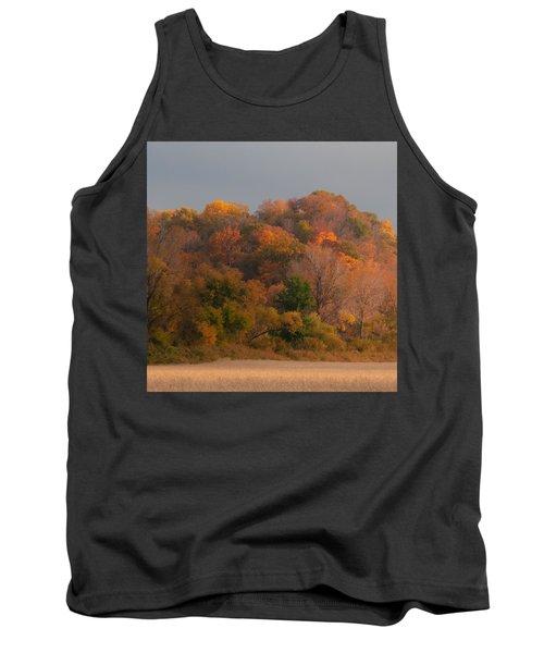 Autumn Splendor Tank Top by Don Spenner
