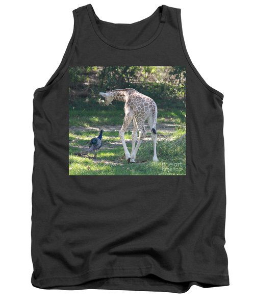 Baby Giraffe And Peacock Out For A Walk Tank Top by John Telfer