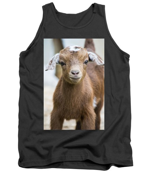 Baby Goat Tank Top by Shelby  Young