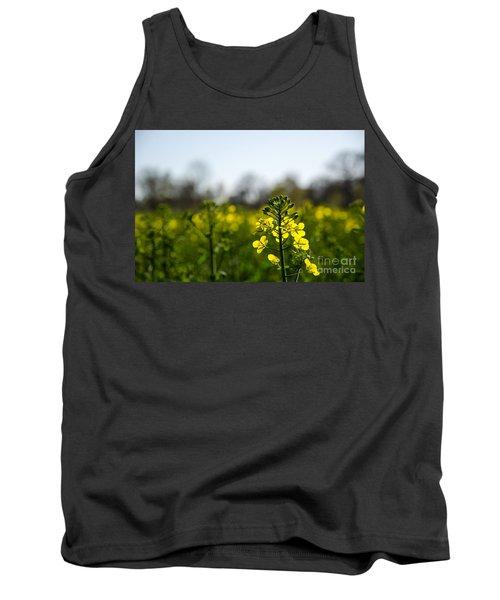 Backlit Canola Flower Tank Top