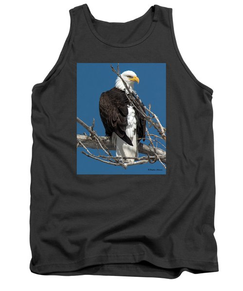 Bald Eagle Putting On The Ritz Tank Top by Stephen  Johnson