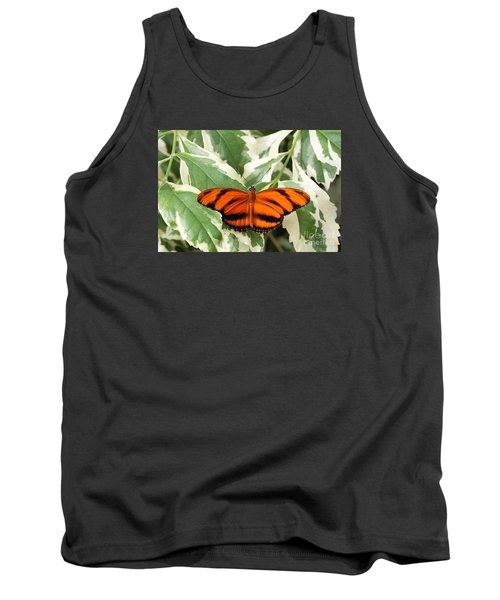 Banded Orange Longwing Butterfly Tank Top by Judy Whitton