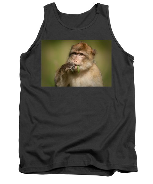 Barbary Macaque Tank Top