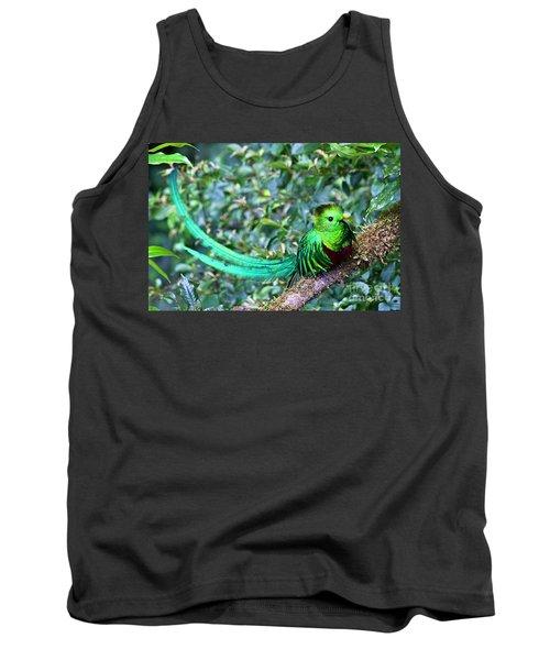 Beautiful Quetzal 3 Tank Top