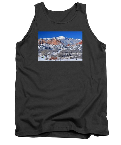 Beautiful Winter Garden Of The Gods Tank Top