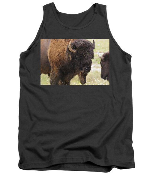 Bison From Yellowstone Tank Top by Belinda Greb