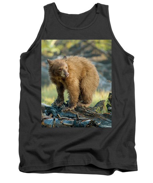 Tank Top featuring the photograph Black Bear by Doug Herr