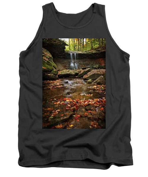 Blue Hen Falls In Autumn Tank Top