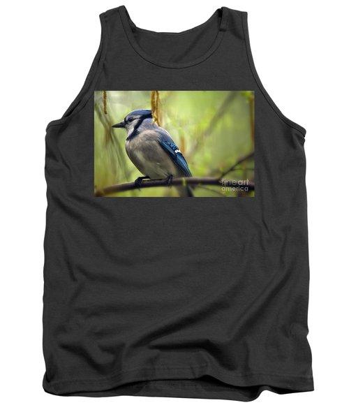 Blue Jay On A Misty Spring Day Tank Top