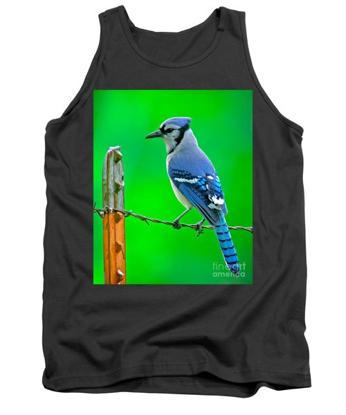 Blue Jay On The Fence Tank Top by Robert Frederick