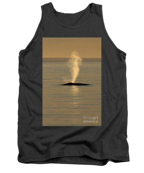 Tank Top featuring the photograph Blue Whale At Sunset In Monterey Bay California  2013 by California Views Mr Pat Hathaway Archives