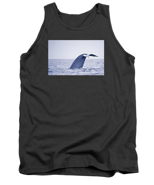 Tank Top featuring the photograph Blue Whale Tail Fluke With Remoras by Liz Leyden