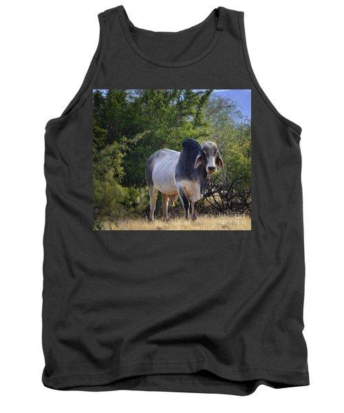 Brahma Cow Tank Top