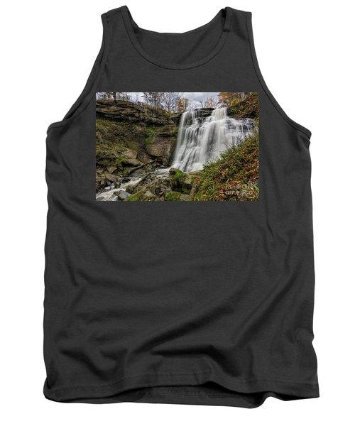 Brandywine Falls Tank Top by James Dean