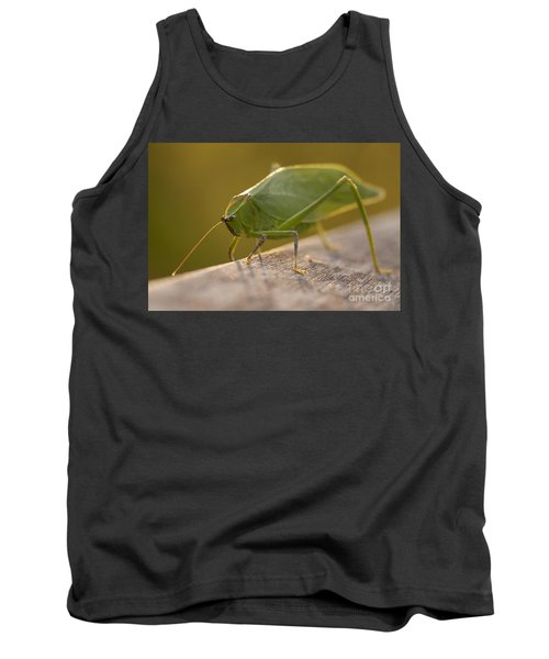 Broad-winged Katydid Tank Top