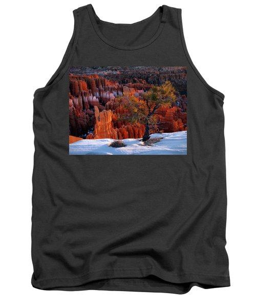 Bryce Canyon Winter Light Tank Top by Leland D Howard