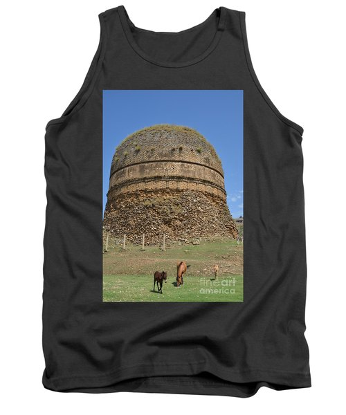 Buddhist Religious Stupa Horse And Mules Swat Valley Pakistan Tank Top by Imran Ahmed