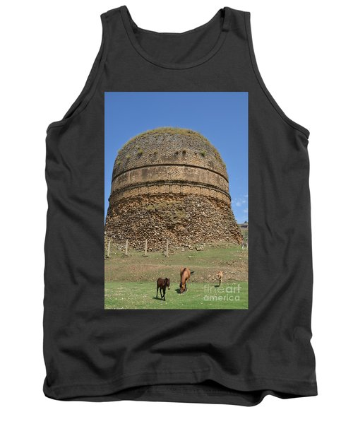 Buddhist Religious Stupa Horse And Mules Swat Valley Pakistan Tank Top