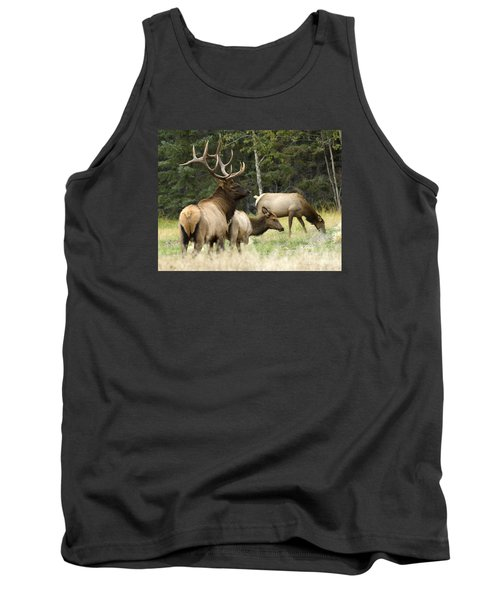 Bull Elk With His Harem Tank Top by Bob Christopher