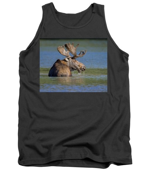 Tank Top featuring the photograph Bull Moose At Fishercap by Jack Bell