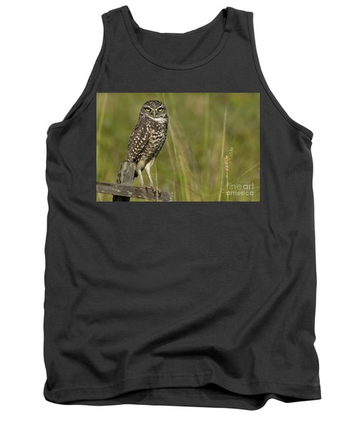 Burrowing Owl Stare Tank Top by Meg Rousher