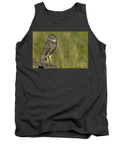 Burrowing Owl Stare Tank Top