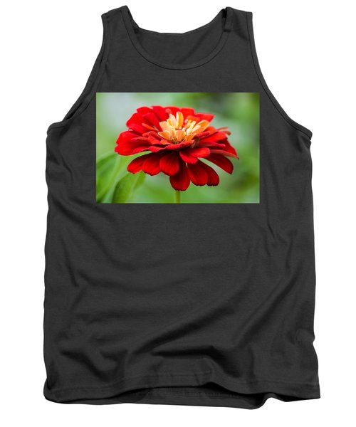 Bursts Of Color Tank Top by Parker Cunningham