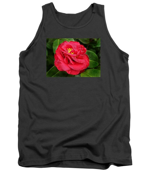 Camellia Japonica ' Dixie Knight ' Tank Top