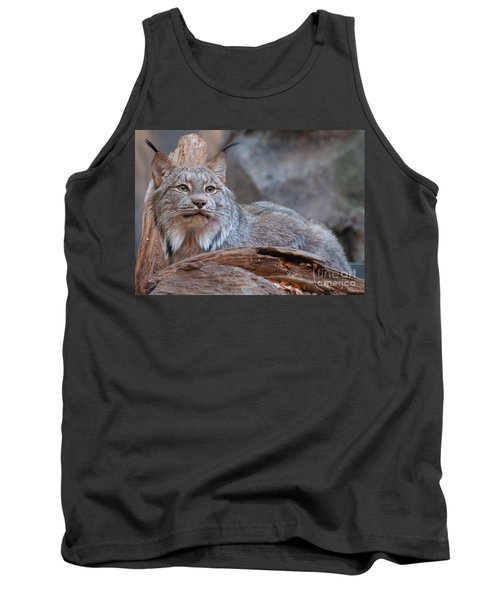 Tank Top featuring the photograph Canada Lynx by Bianca Nadeau