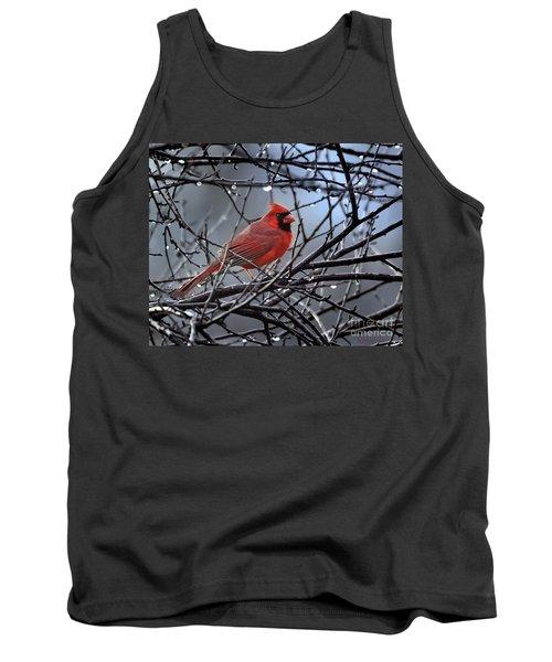 Cardinal In The Rain   Tank Top
