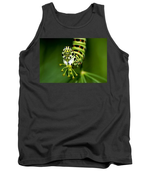 Caterpillar Of The Old World Swallowtail Tank Top by Torbjorn Swenelius