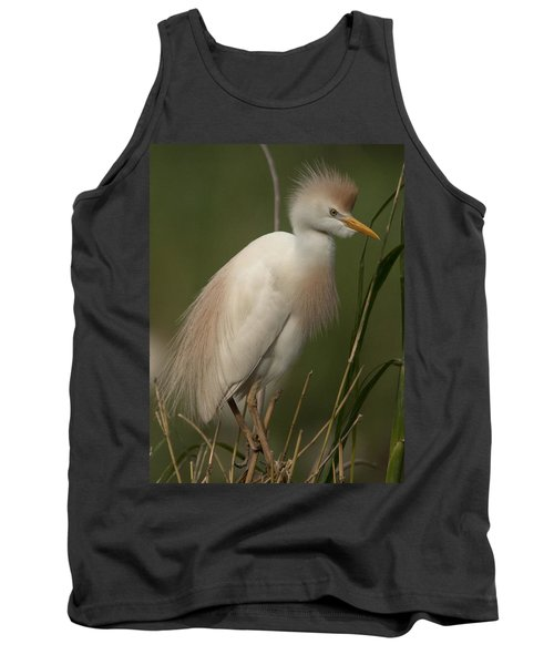 Cattle Egret Tank Top