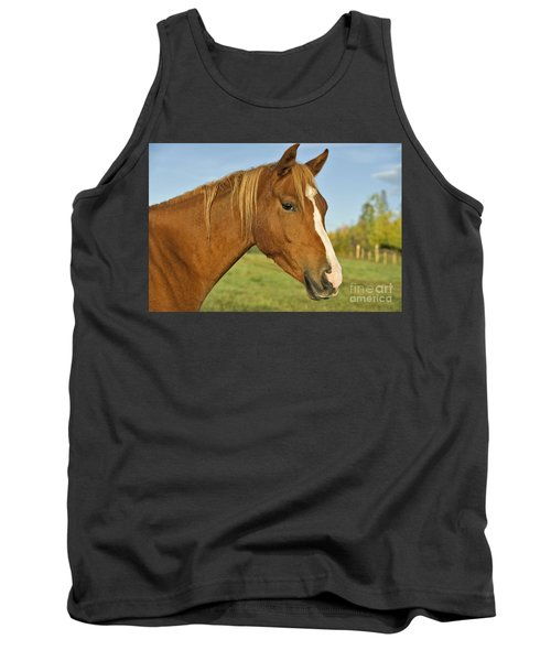 Chestnut Arabian Horse Tank Top