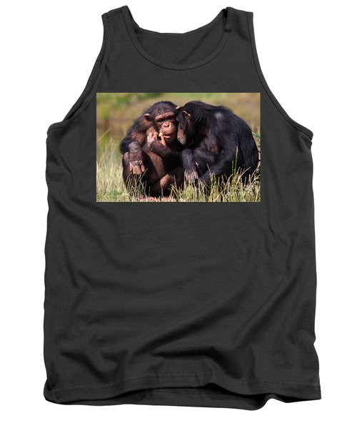 Chimpanzees Eating A Carrot Tank Top by Nick  Biemans