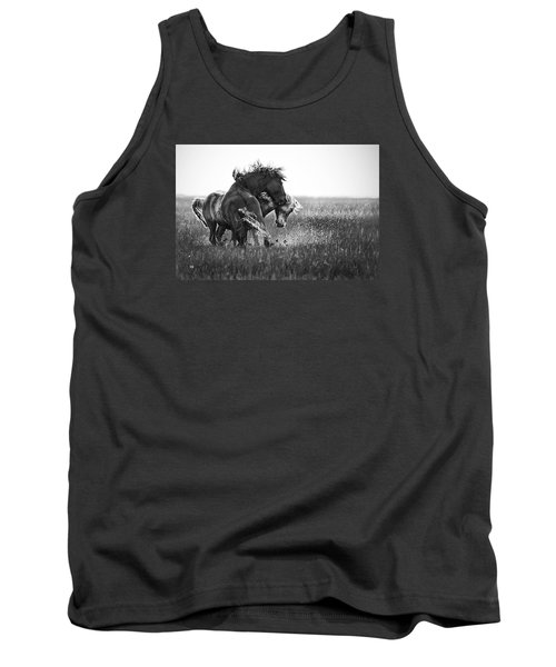 Clash Of Two Wild Stallions Tank Top
