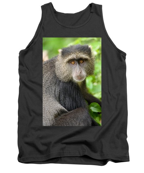 Close-up Of A Blue Monkey Cercopithecus Tank Top
