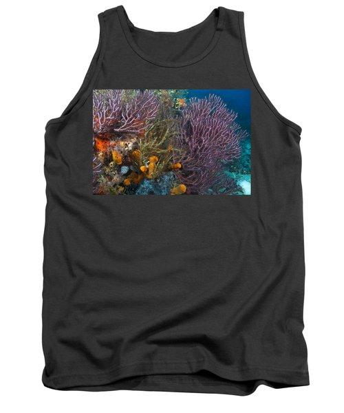 Colors Of Reefs Tank Top