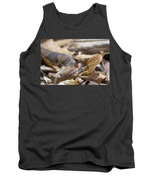Copperhead In The Wild Tank Top by Betsy Knapp