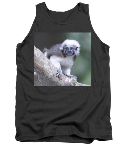 Tank Top featuring the photograph Cotton Top Tamarin  by Shoal Hollingsworth