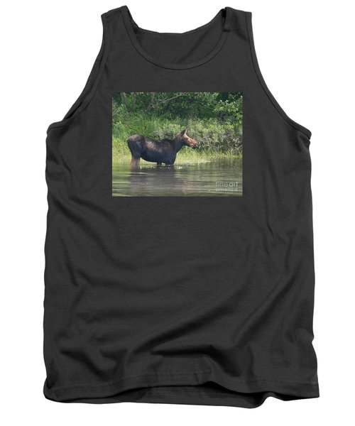 Cow Moose Breakfast Tank Top by Neal Eslinger