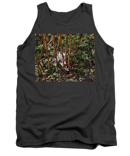 Crocuses And Raspberry Canes Tank Top