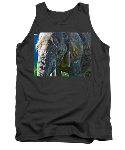 Cuddles In Search Tank Top