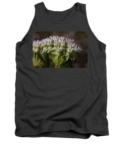 Tank Top featuring the photograph Curtiss' Milkweed #3 by Paul Rebmann