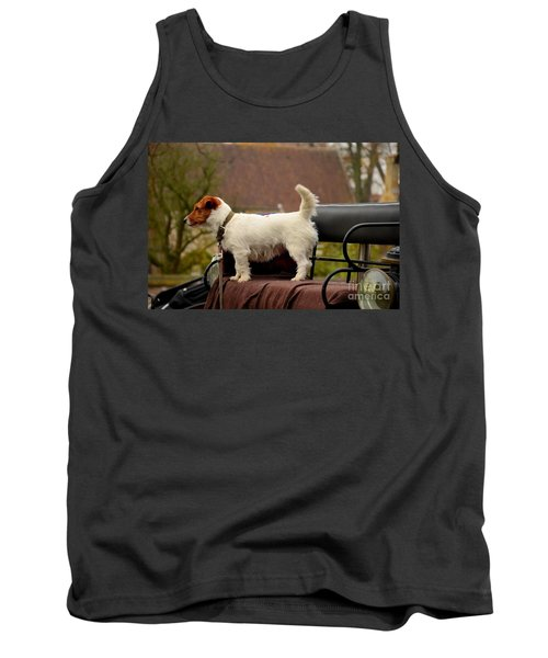 Cute Dog On Carriage Seat Bruges Belgium Tank Top