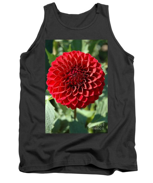 Tank Top featuring the photograph Dahlia Xii by Christiane Hellner-OBrien