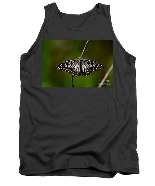 Dark Glassy Tiger Butterfly On Branch Tank Top by Imran Ahmed
