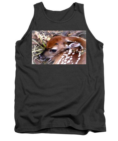 Deer-img-0348-001 Tank Top