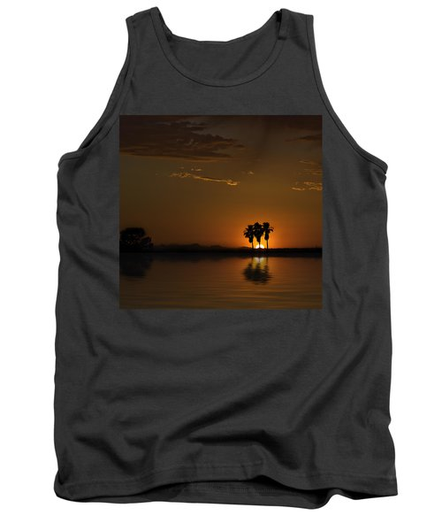 Desert Sunset Tank Top by Lynn Geoffroy