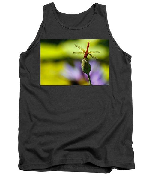 Dragonfly Display Tank Top